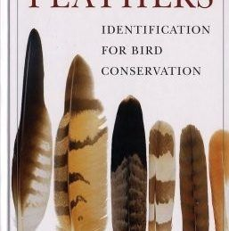 Madártoll határozó-Feathers: Identification for Bird Conservation