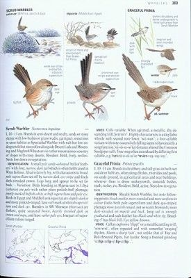 Collins madárhatározó-Collins Bird Guide: The Most Complete Guide to the Birds of Britain and Europe
